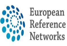 22 candidaturas nacionais às Redes Europeias de Referência recebem parecer favorável da Comissão Eur