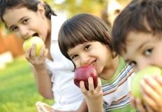 Novo sitio Pensar Nutrição – Combater a desinformação
