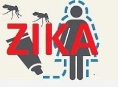 OMS reúne Comité de Emergência sobre microcefalia, distúrbios neurológicos e vírus Zika