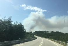 Impacte na Saúde da inalação de fumo resultante de incêndios florestais