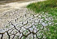 A Adaptação às Alterações Climáticas no Setor da Saúde